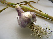 Garlic_cut
